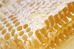 Our inner lives are like a honeycomb.
