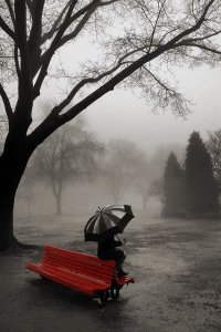 """Fog"" by Katy Drake, via Pinterest"